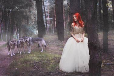 Wolf heart by OlgaBlair