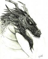 DraGoN by SanOzbulbul