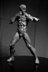 Martial Arts Artist (2) by ThiagoProvin