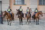 Nice Police by sandas04