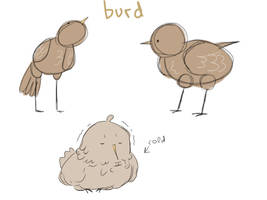 Burd by liepaa