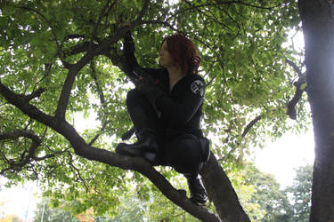Black Widow - Waiting in the Net by Trixita