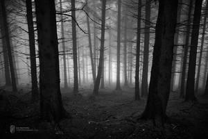 Limbo by Pr3t3nd3r