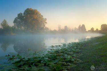 Sleepy pond by Pr3t3nd3r