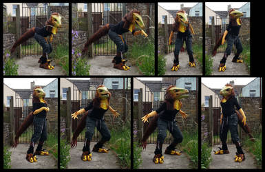 Pyroraptor Costume by CuriousCreatures