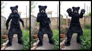 Cat-Bear Fursuit FOR SALE by CuriousCreatures