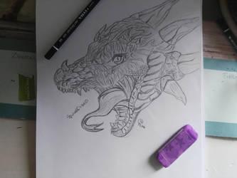 Dragon    by Squirrelflight0