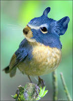 bluegerbiltit by imamon