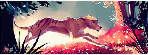 Run, Run, Run~ by AllesiaTheHedge