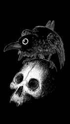 Skull and Raven by lorenzolamass
