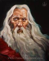 Albus Dumbledore by Darko-Stojanovic-Art