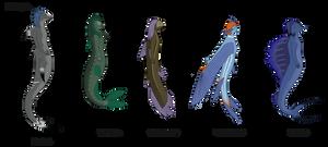 Fish Races by Aerophoinix