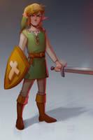 Zelda 2/Breath of the Wild Link (16 yo) by EponaN64