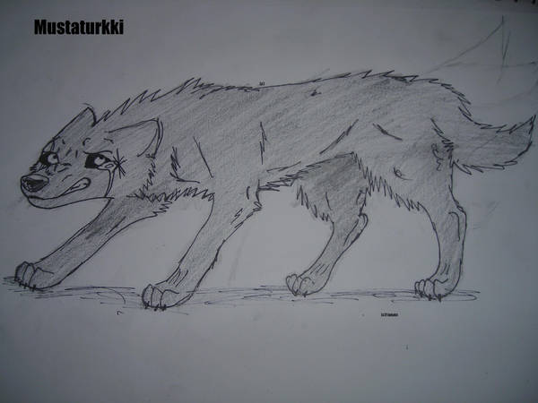 Mustaturkki. Blackfur by WolfQuestYamato