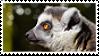 Lemur stamp by Zheffari