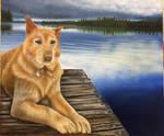 Lake Dog Jack by atomiccolm