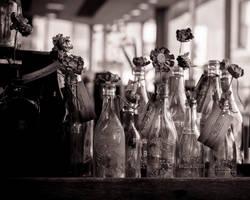 Elegy in Glass by greystarlight