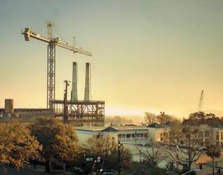 Savannah, Morning by greystarlight