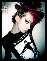 Harlequin by gakSTUDIO