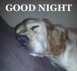 Good Night by Vathiss