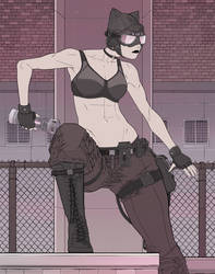 Catwoman: Alley Cat by ExMile