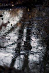 Winter Pond 2 by Art-Photo