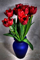 Tulips 3 by Art-Photo