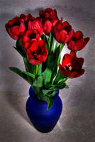 Tulips 5 by Art-Photo