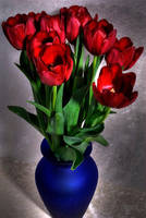 Tulips 6 by Art-Photo
