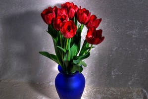 Tulips 7 by Art-Photo