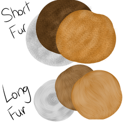 Short and Long Fur Brushes (FireAlpaca) READ DESC. by 18Gingasoldier