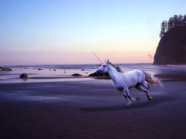 Turning Twilight by Tolandiel-Roquen