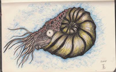 Ammonite Nr.1 Sketch by squidink