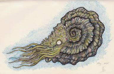 Ammonite Nr.2 Sketch by squidink