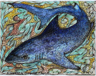 Tiburon by squidink