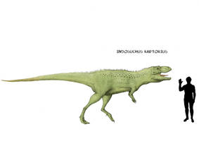 Indosuchus by Hyrotrioskjan