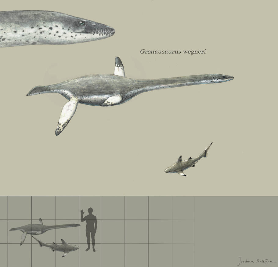 Gronausaurus by Hyrotrioskjan