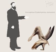 Siroccopteryx/Coloborhynchus by Hyrotrioskjan