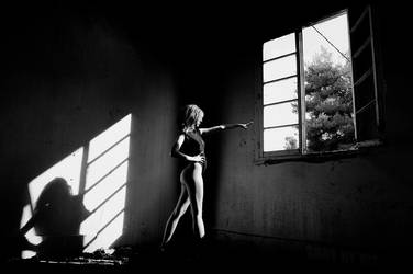 Dark Shadows by Piddling