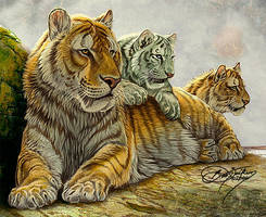 Sabertooth Family by Damalia