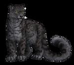 Snow Leopard by DeyVarah