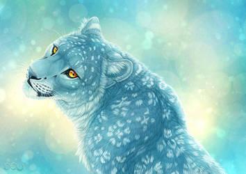 Wintercoat by DeyVarah