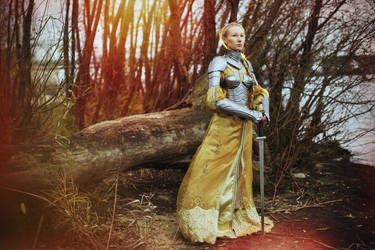 Steel Armor Set Queen of the Lake/Bracers/Pauldron by vofffka