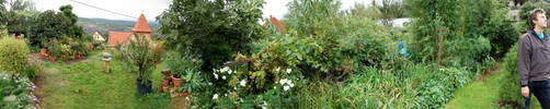 mgarden_pano by carbothronic