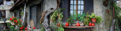 mgarden_pano3 by carbothronic