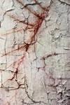 Texture 323 by Sirius-sdz