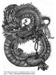 Gaia: The Black Dragon by The-Beautiful-Sin