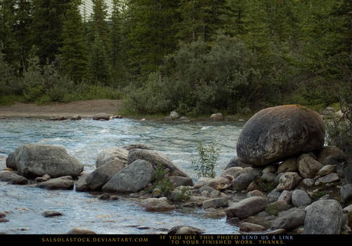 Creekside Boulder 3 by SalsolaStock