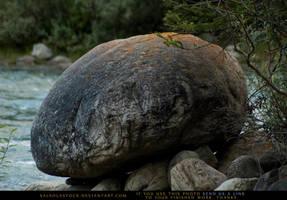 Creekside Boulder 1 by SalsolaStock