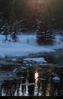 Snow Scene 4 by SalsolaStock